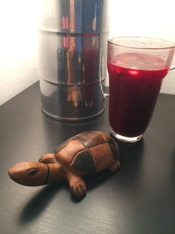 Juicing glas og skildpadde